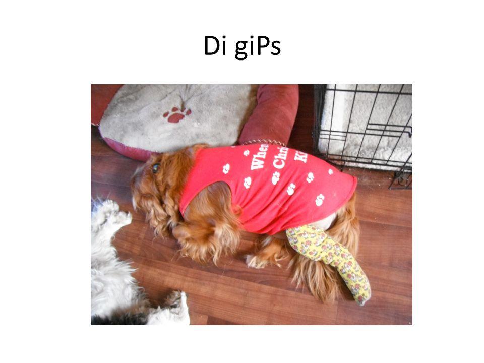 Di giPs