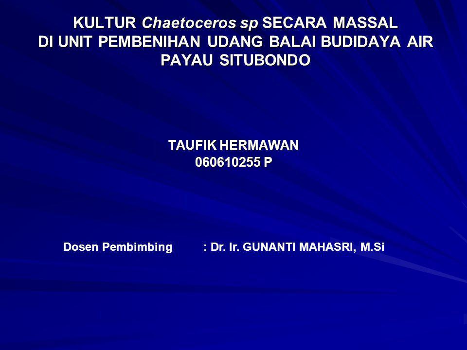 KULTUR Chaetoceros sp SECARA MASSAL DI UNIT PEMBENIHAN UDANG BALAI BUDIDAYA AIR PAYAU SITUBONDO TAUFIK HERMAWAN 060610255 P Dosen Pembimbing : Dr. Ir.