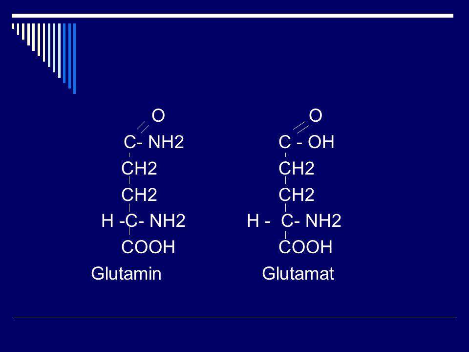 O O C- NH2C - OH CH2CH2 H -C- NH2 H - C- NH2 COOHCOOH Glutamin Glutamat