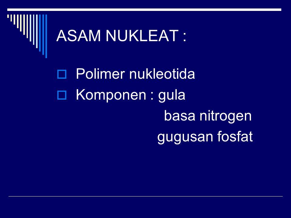 ASAM NUKLEAT :  Polimer nukleotida  Komponen : gula basa nitrogen gugusan fosfat