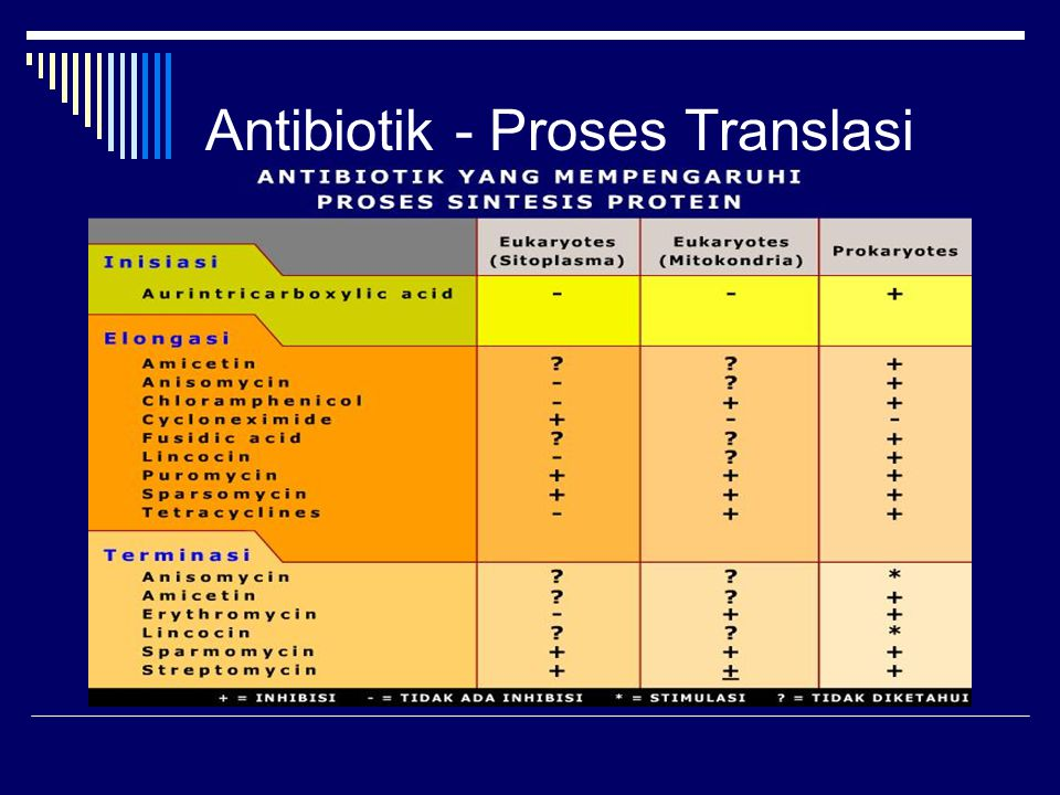 Antibiotik - Proses Translasi