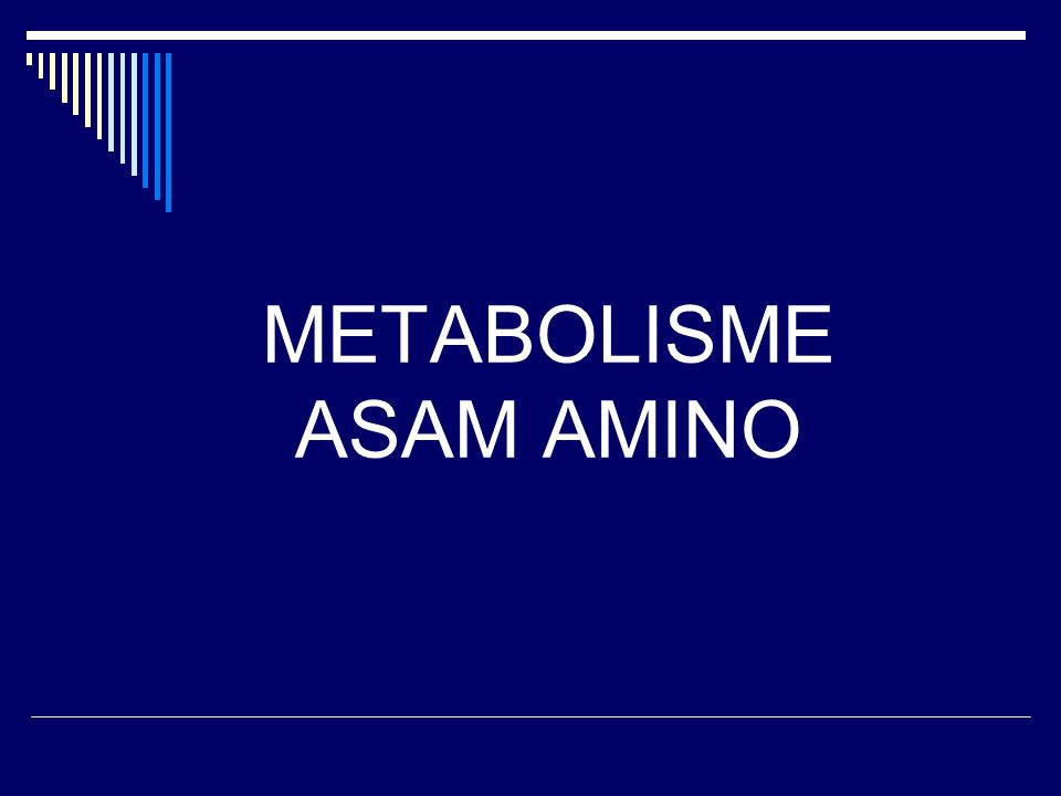  Metabolisme Asam Amino Katabolisme Asam Amino  Katabolisme Atom N Transaminasi Deaminasi Oksidatif Pembentukan & Transport NH3 Siklus Urea & Gangguannya  Katabolisme Atom C Biosintesis Asam Amino Produk Khusus