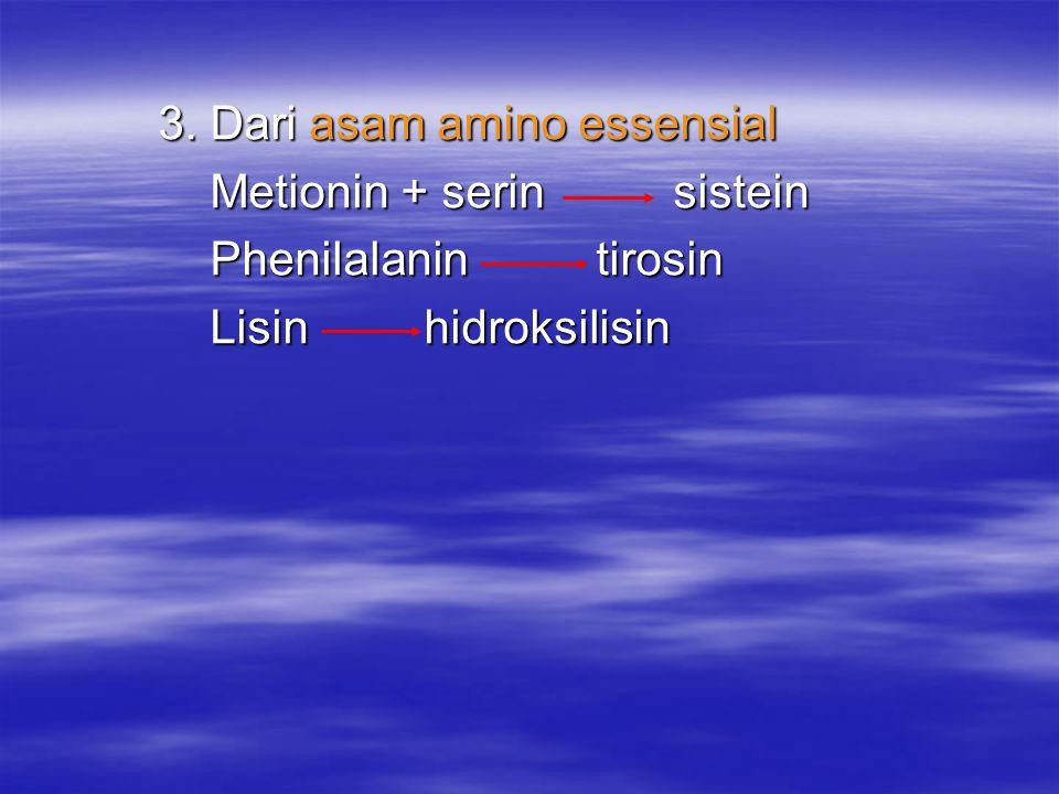 3. Dari asam amino essensial 3. Dari asam amino essensial Metionin + serin sistein Metionin + serin sistein Phenilalanin tirosin Phenilalanin tirosin