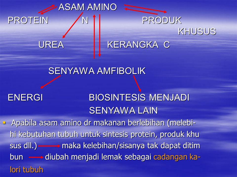  DEAMINASI OKSIDATIF NAD(P)+ NAD(P)H + H+ NAD(P)+ NAD(P)H + H+ NH3 NH3 L-GLUTAMAT  -KETOGLUTARAT L-GLUTAMAT  -KETOGLUTARAT  ENZIMNYA: L-GLUTAMAT DEHIDROGENASE –REVERSIBEL –SEBAGAI ENZIM PENGENDALI –INHIBITOR ALLOSTERIK: ATP, GTP, NADH –AKTIVATOR ALLOSTERIK: ADP, GDP –DIDAPAT DI BERBAGAI JARINGAN DALAM SITOPLASMA DAN MITOKONDRIA
