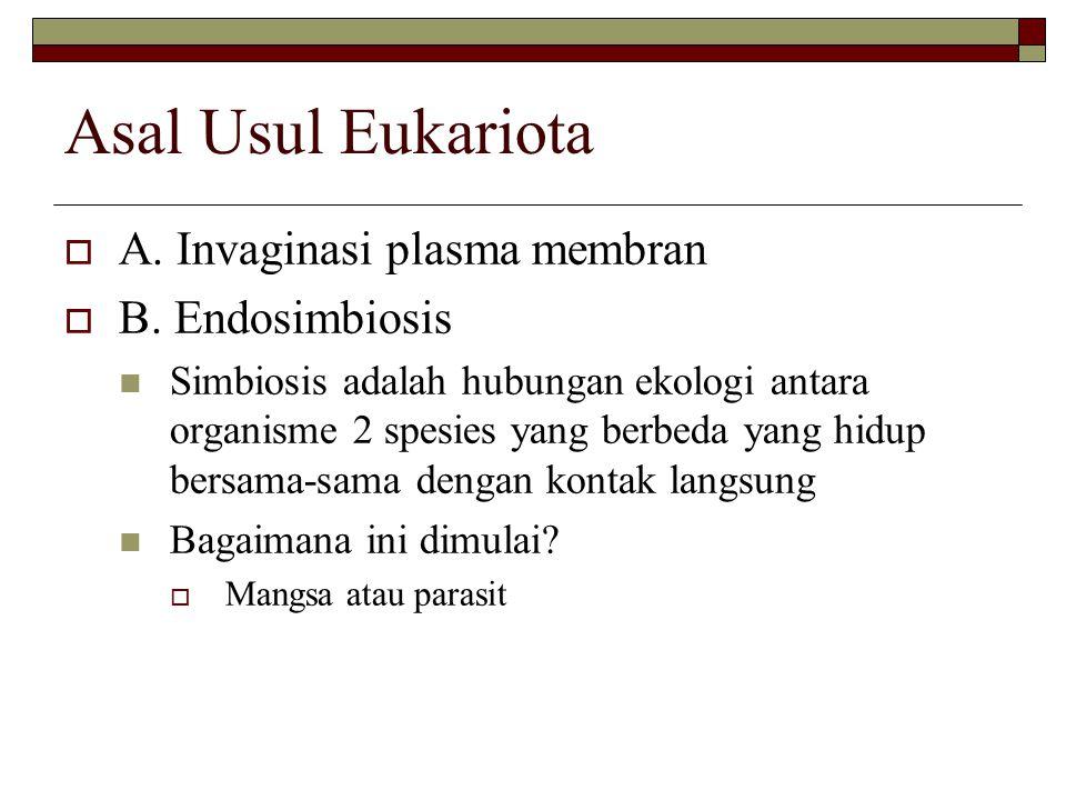 Asal Usul Eukariota  A. Invaginasi plasma membran  B.