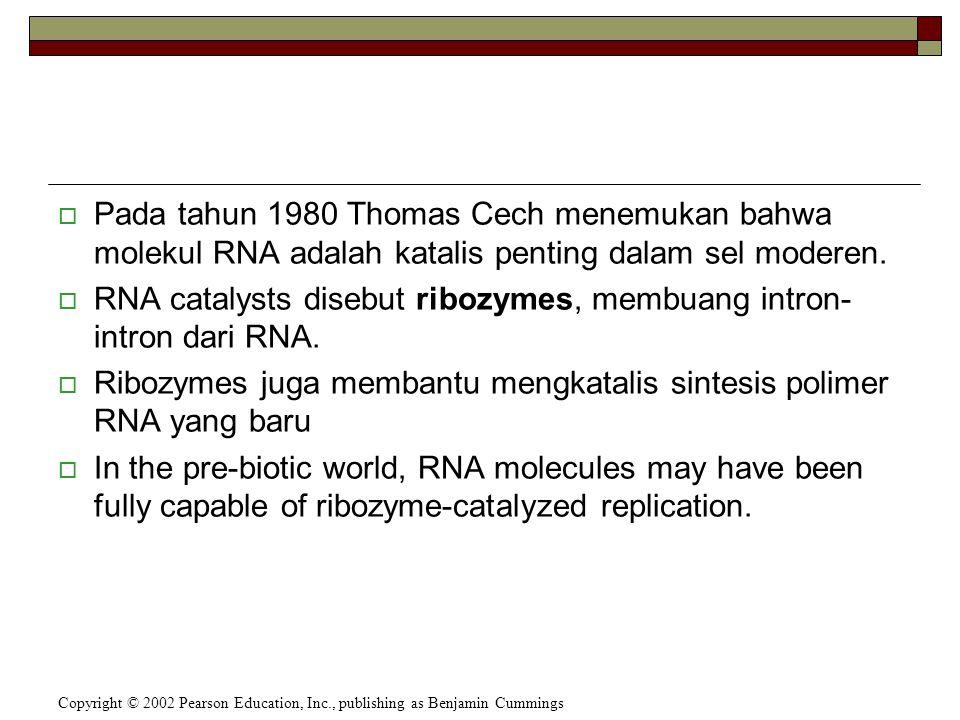  Pada tahun 1980 Thomas Cech menemukan bahwa molekul RNA adalah katalis penting dalam sel moderen.