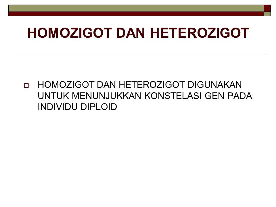 HOMOZIGOT DAN HETEROZIGOT  HOMOZIGOT DAN HETEROZIGOT DIGUNAKAN UNTUK MENUNJUKKAN KONSTELASI GEN PADA INDIVIDU DIPLOID