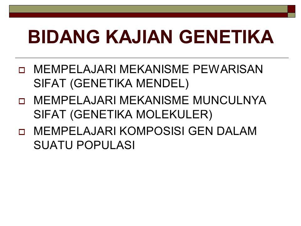 BIDANG KAJIAN GENETIKA  MEMPELAJARI MEKANISME PEWARISAN SIFAT (GENETIKA MENDEL)  MEMPELAJARI MEKANISME MUNCULNYA SIFAT (GENETIKA MOLEKULER)  MEMPEL