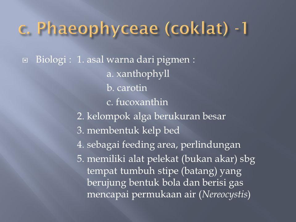  Biologi :1. asal warna dari pigmen : a. xanthophyll b. carotin c. fucoxanthin 2. kelompok alga berukuran besar 3. membentuk kelp bed 4. sebagai feed