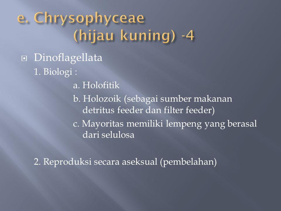  Dinoflagellata 1. Biologi : a. Holofitik b. Holozoik (sebagai sumber makanan detritus feeder dan filter feeder) c. Mayoritas memiliki lempeng yang b