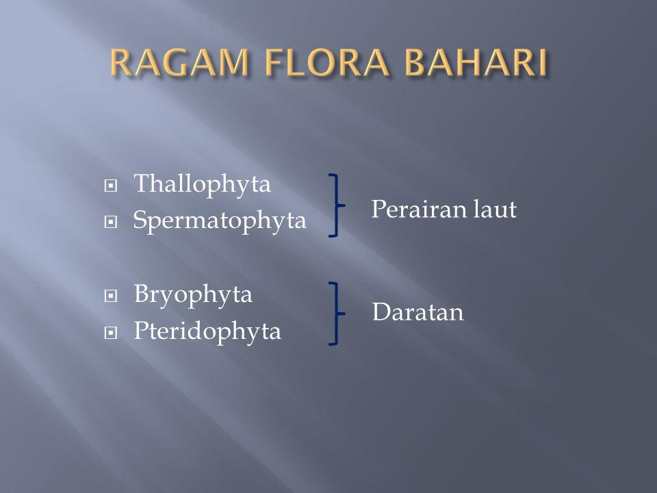  Thallophyta  Spermatophyta  Bryophyta  Pteridophyta Perairan laut Daratan