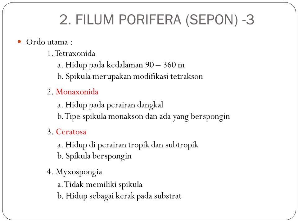 Ordo utama : 1. Tetraxonida a. Hidup pada kedalaman 90 – 360 m b. Spikula merupakan modifikasi tetrakson 2. Monaxonida a. Hidup pada perairan dangkal