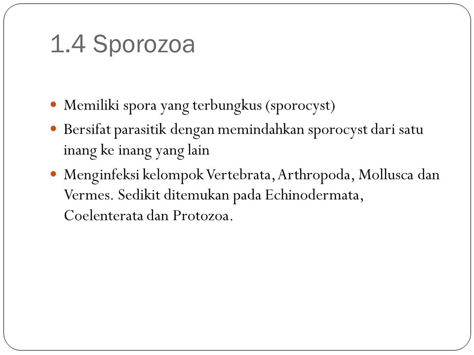 1.4 Sporozoa Memiliki spora yang terbungkus (sporocyst) Bersifat parasitik dengan memindahkan sporocyst dari satu inang ke inang yang lain Menginfeksi