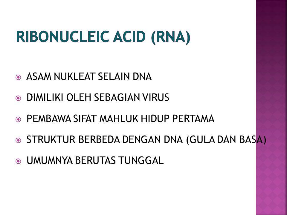  ASAM NUKLEAT SELAIN DNA  DIMILIKI OLEH SEBAGIAN VIRUS  PEMBAWA SIFAT MAHLUK HIDUP PERTAMA  STRUKTUR BERBEDA DENGAN DNA (GULA DAN BASA)  UMUMNYA BERUTAS TUNGGAL