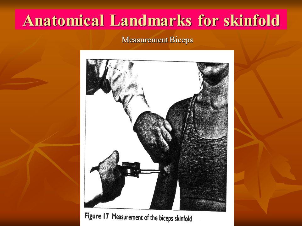 Anatomical Landmarks for skinfold Measurement Biceps