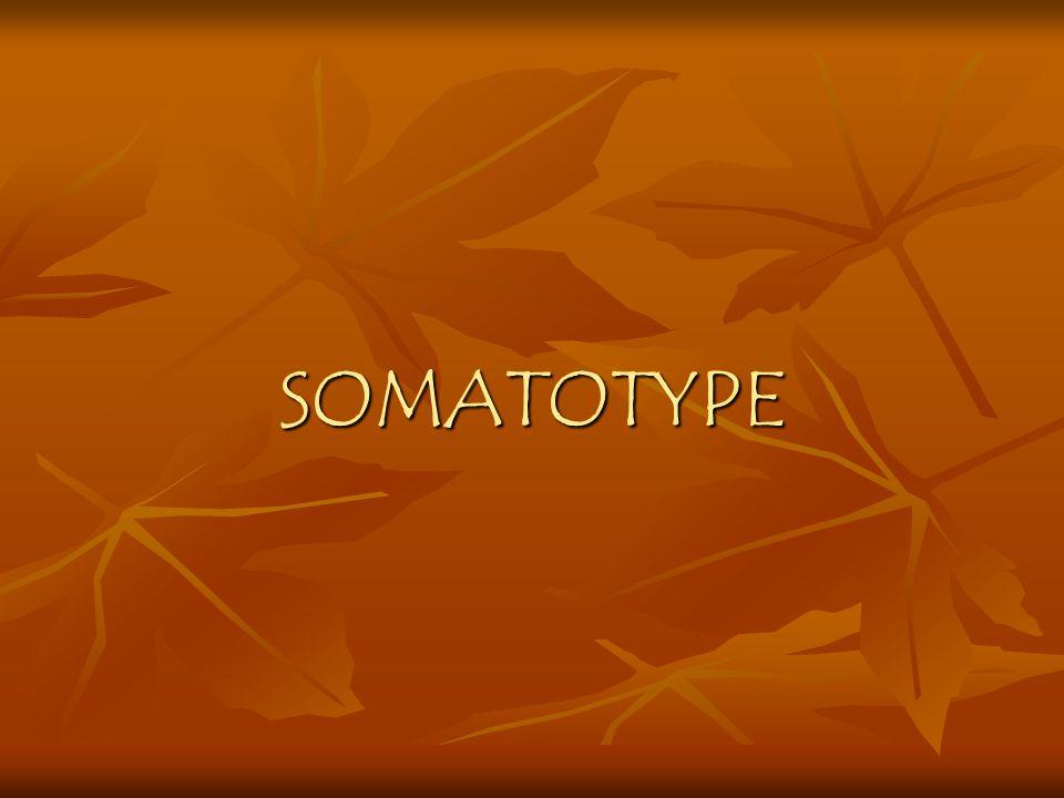 SOMATOTYPE