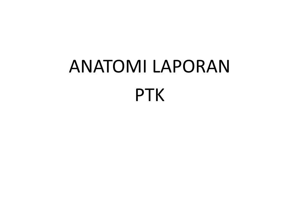 ANATOMI LAPORAN PTK