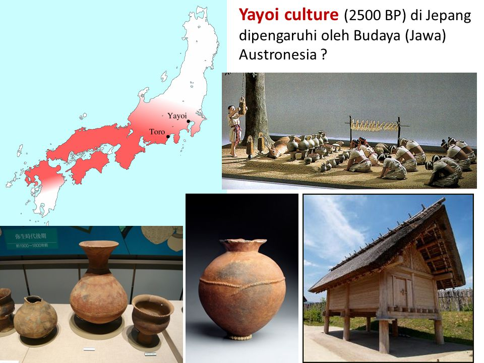 Yayoi culture (2500 BP) di Jepang dipengaruhi oleh Budaya (Jawa) Austronesia ?