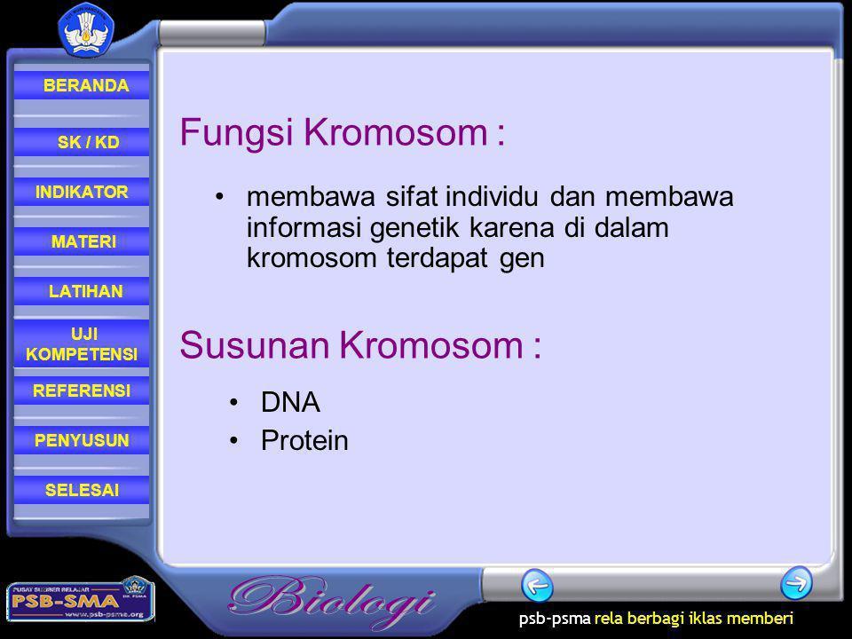 psb-psma rela berbagi iklas memberi REFERENSI LATIHAN MATERI PENYUSUN INDIKATOR SK / KD UJI KOMPETENSI BERANDA SELESAI Fungsi Kromosom : membawa sifat individu dan membawa informasi genetik karena di dalam kromosom terdapat gen Susunan Kromosom : DNA Protein