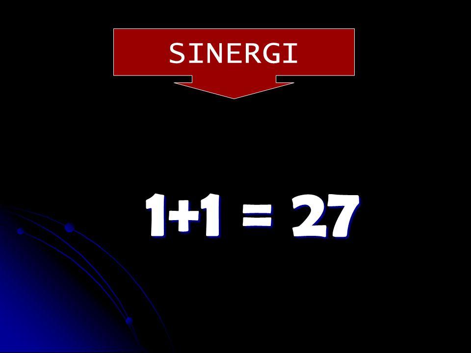 SINERGI 1+1 = ?