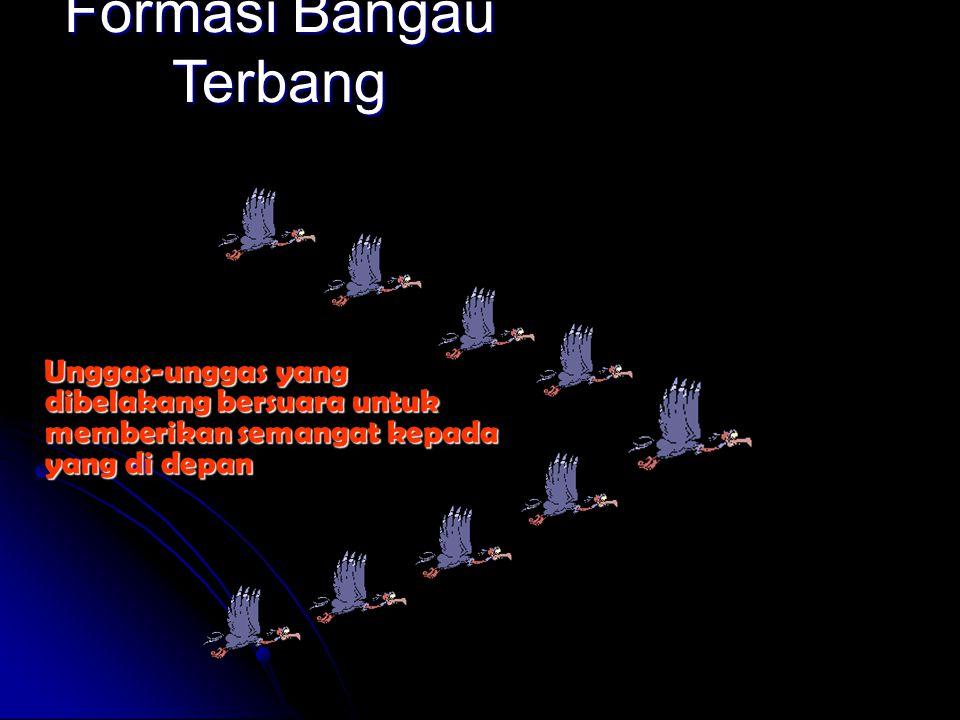 Formasi Bangau Terbang Dengan terbang dalam formasi, seluruh kawanan itu bisa terbang 71 % lebih jauh ketimbang kalau masing-masing burung terbang sen