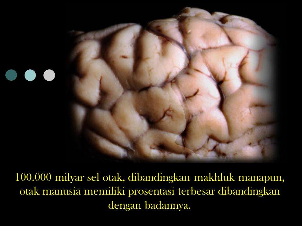 Otak Kambing dan Manusia