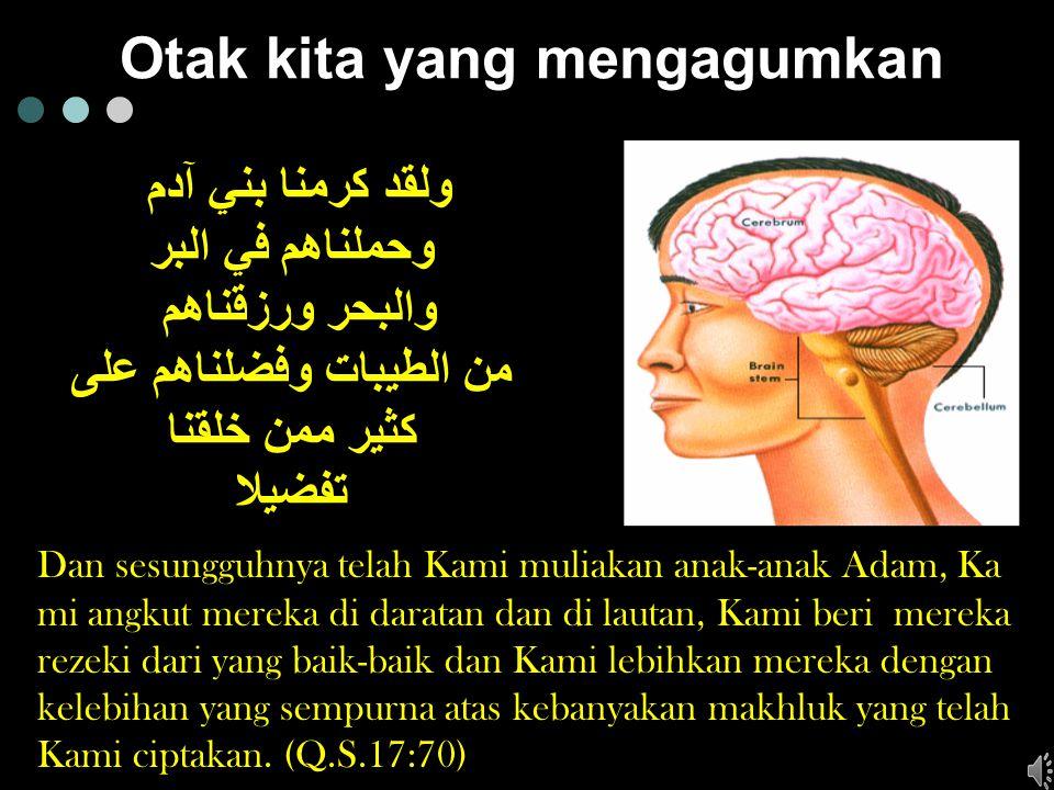 100.000 milyar sel otak, dibandingkan makhluk manapun, otak manusia memiliki prosentasi terbesar dibandingkan dengan badannya.