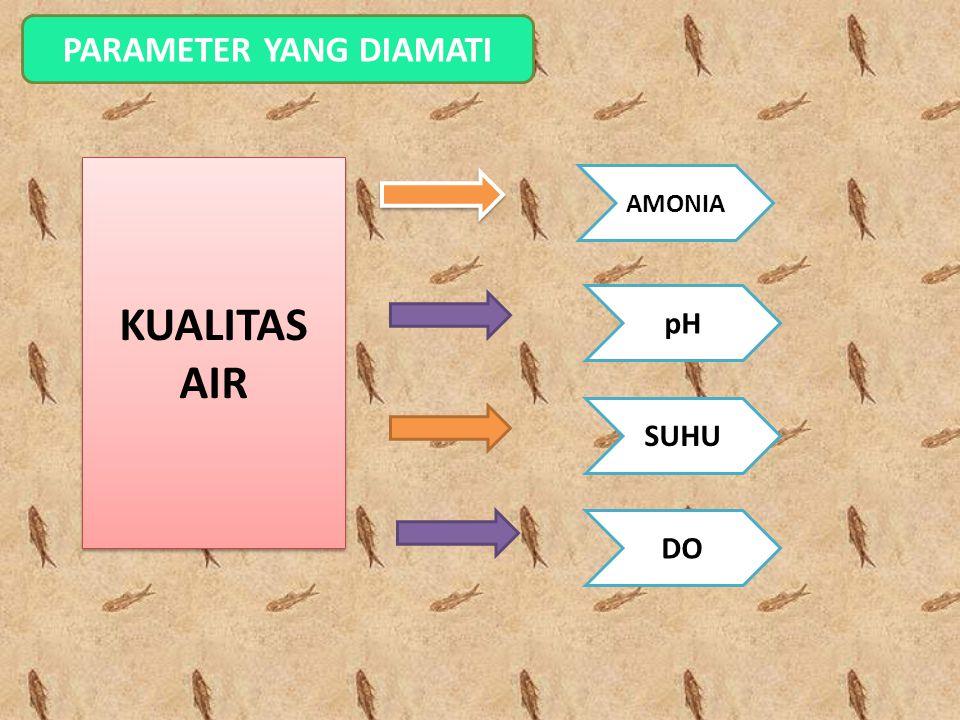 PARAMETER YANG DIAMATI SUHU pH DO AMONIA KUALITAS AIR