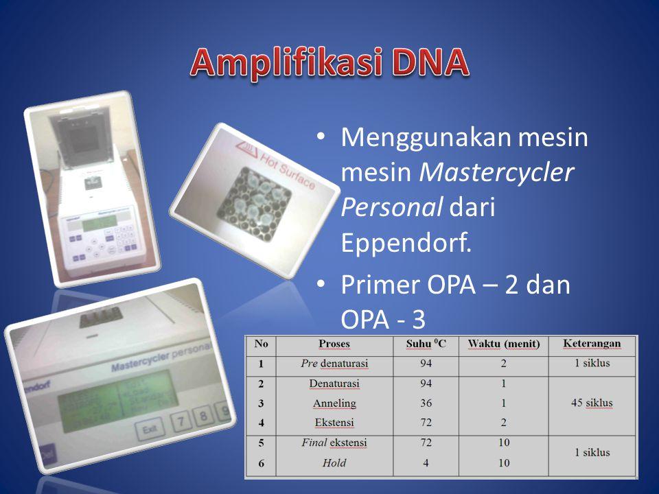 Menggunakan mesin mesin Mastercycler Personal dari Eppendorf. Primer OPA – 2 dan OPA - 3