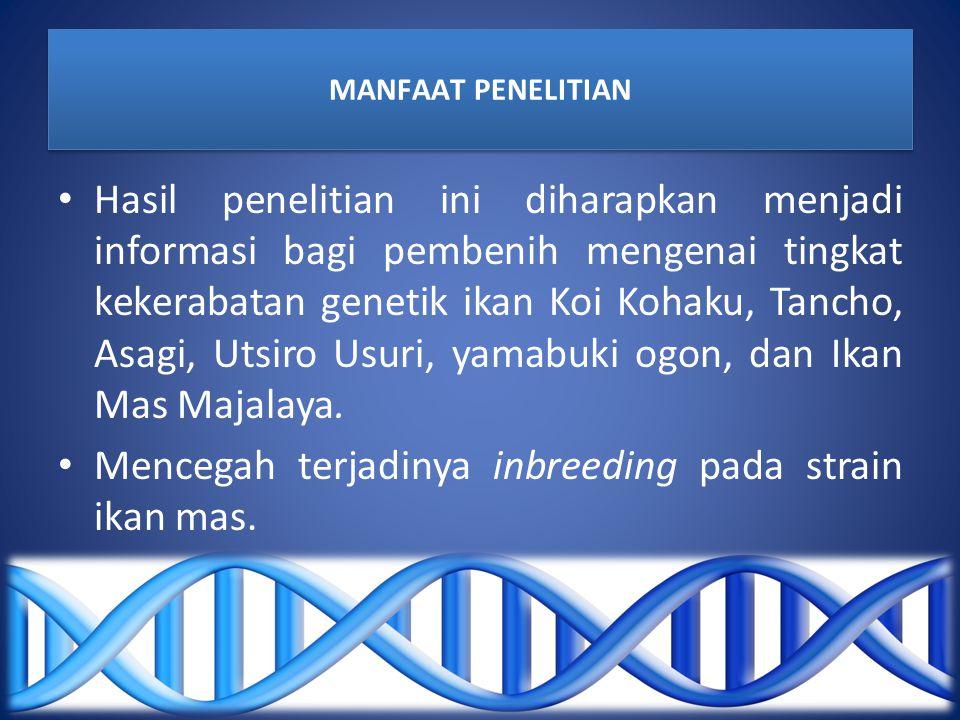 MANFAAT PENELITIAN Hasil penelitian ini diharapkan menjadi informasi bagi pembenih mengenai tingkat kekerabatan genetik ikan Koi Kohaku, Tancho, Asagi, Utsiro Usuri, yamabuki ogon, dan Ikan Mas Majalaya.