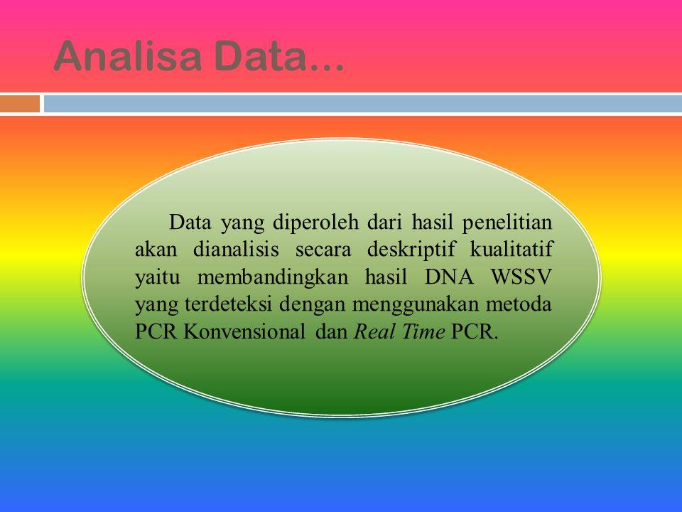 Analisa Data... Data yang diperoleh dari hasil penelitian akan dianalisis secara deskriptif kualitatif yaitu membandingkan hasil DNA WSSV yang terdete