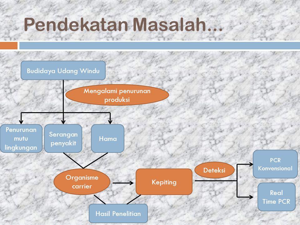 Pendekatan Masalah... Budidaya Udang Windu Mengalami penurunan produksi Penurunan mutu lingkungan Serangan penyakit Hama Organisme carrier Kepiting PC