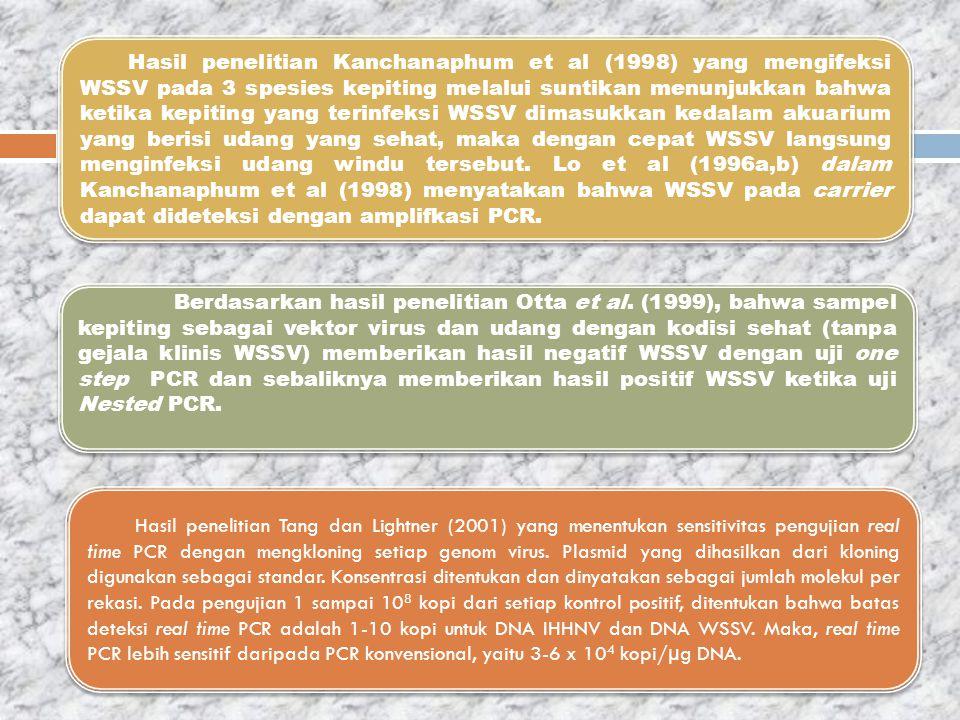 Hasil penelitian Kanchanaphum et al (1998) yang mengifeksi WSSV pada 3 spesies kepiting melalui suntikan menunjukkan bahwa ketika kepiting yang terinf