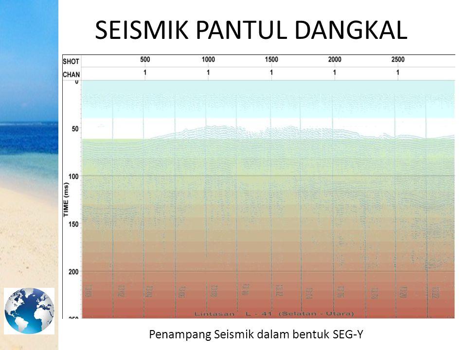 SEISMIK PANTUL DANGKAL Penampang Seismik dalam bentuk SEG-Y