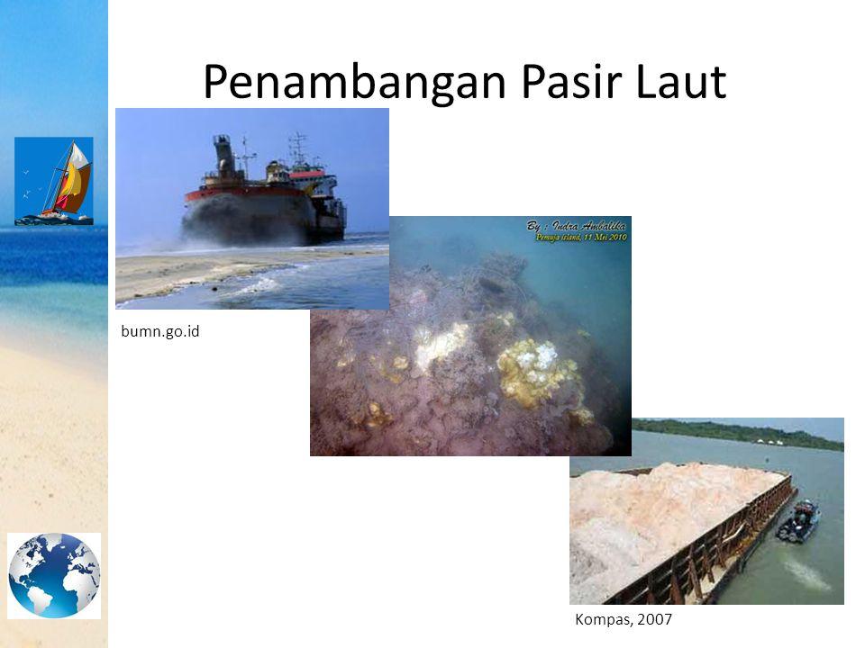Dampak Penambangan Pasir Laut terhadap Sumber Daya Hayati dan non-Hayati Penambangan pasir laut dengan cara penghisapan dapat mengakibatkan lumpur pada dasar perairan menjadi teraduk.