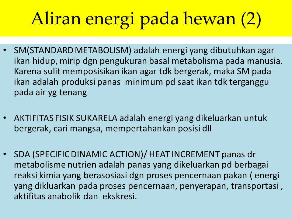 Aliran energi pada hewan (2) SM(STANDARD METABOLISM) adalah energi yang dibutuhkan agar ikan hidup, mirip dgn pengukuran basal metabolisma pada manusi