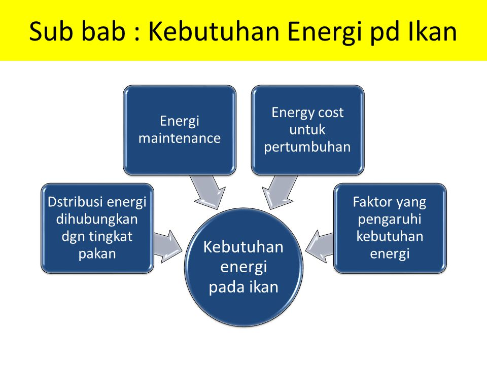 Sub bab : Kebutuhan Energi pd Ikan Kebutuhan energi pada ikan Dstribusi energi dihubungkan dgn tingkat pakan Energi maintenance Energy cost untuk pert