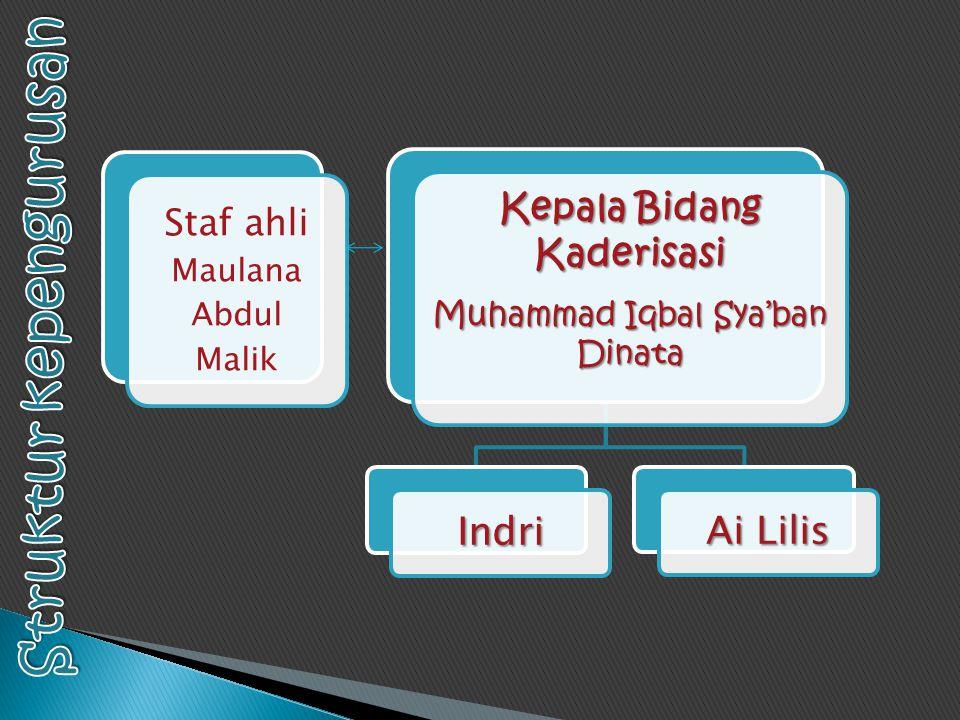  Mubes  Muker dan Raker  Open Recruitment  Pk habibi  SMS Tausiyah  Musyawarah Besar Islam (MUSBI)  Bimbingan Rutin  Temu Alumni  Rihlah  BCA