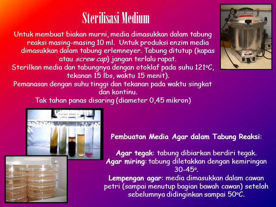 Untuk membuat biakan murni, media dimasukkan dalam tabung reaksi masing-masing 10 ml.