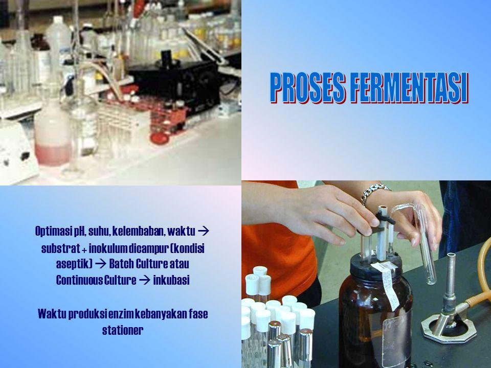 Optimasi pH, suhu, kelembaban, waktu  substrat + inokulum dicampur (kondisi aseptik)  Batch Culture atau Continuous Culture  inkubasi Waktu produksi enzim kebanyakan fase stationer