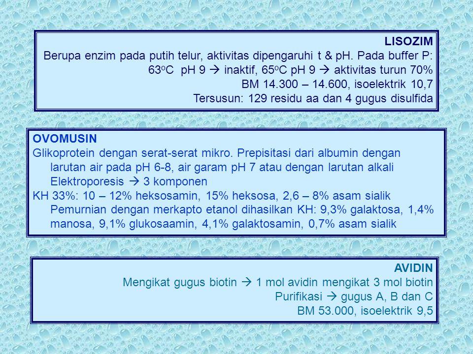 LISOZIM Berupa enzim pada putih telur, aktivitas dipengaruhi t & pH. Pada buffer P: 63 o C pH 9  inaktif, 65 o C pH 9  aktivitas turun 70% BM 14.300