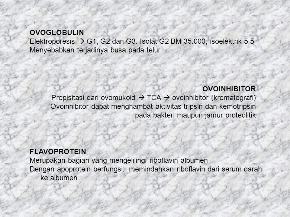 OVOGLOBULIN Elektroporesis  G1, G2 dan G3. Isolat G2 BM 35.000, isoelektrik 5,5 Menyebabkan terjadinya busa pada telur OVOINHIBITOR Prepisitasi dari