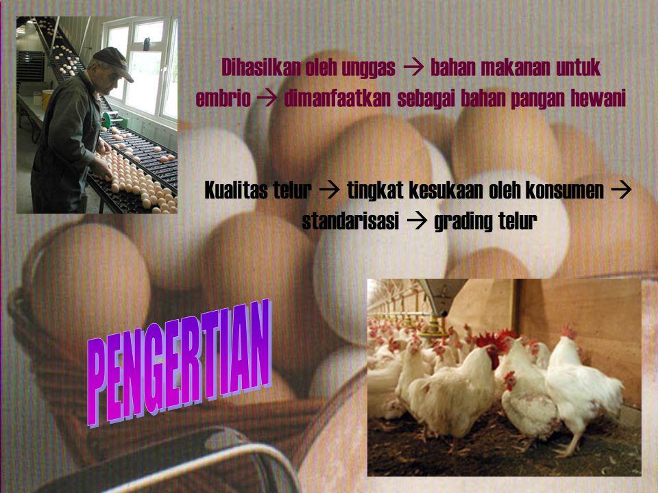 Berdasarkan Berat Telur: 1 2 3 4 5 6 7 1.Size 1: > 70 g 2.Size 2: 65 – 70 g 3.Size 3: 60 – 65 g 4.Size 4: 55 – 60 g 5.Size 5: 50 – 55 g 6.Size 6: 45 – 50 g 7.Size 7: < 45 g