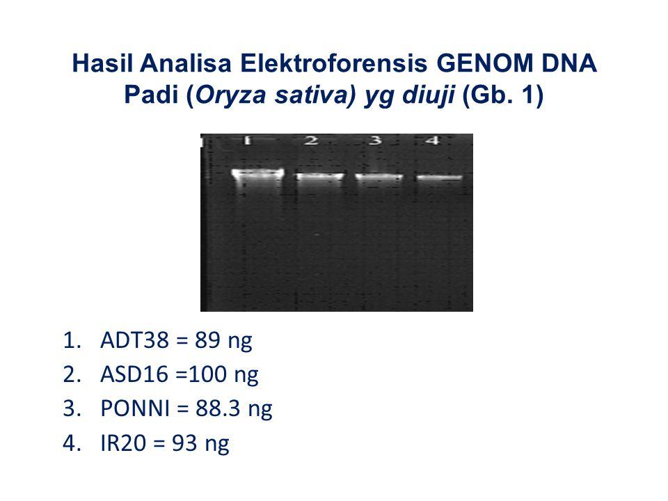 Hasil Analisa Elektroforensis GENOM DNA Padi (Oryza sativa) yg diuji (Gb. 1) 1.ADT38 = 89 ng 2.ASD16 =100 ng 3.PONNI = 88.3 ng 4.IR20 = 93 ng