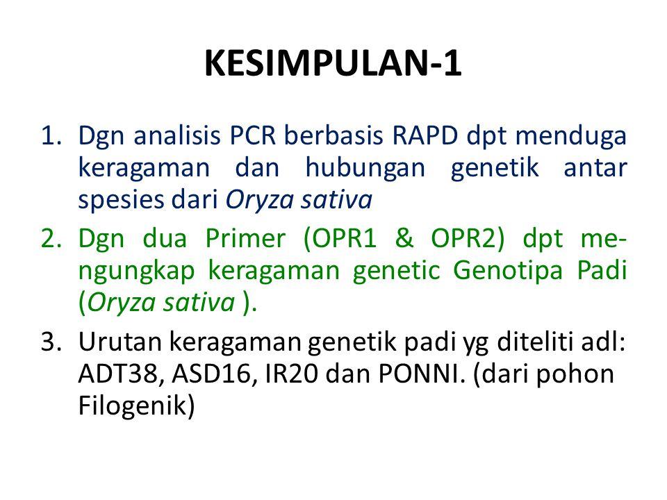 KESIMPULAN-1 1.Dgn analisis PCR berbasis RAPD dpt menduga keragaman dan hubungan genetik antar spesies dari Oryza sativa 2.Dgn dua Primer (OPR1 & OPR2