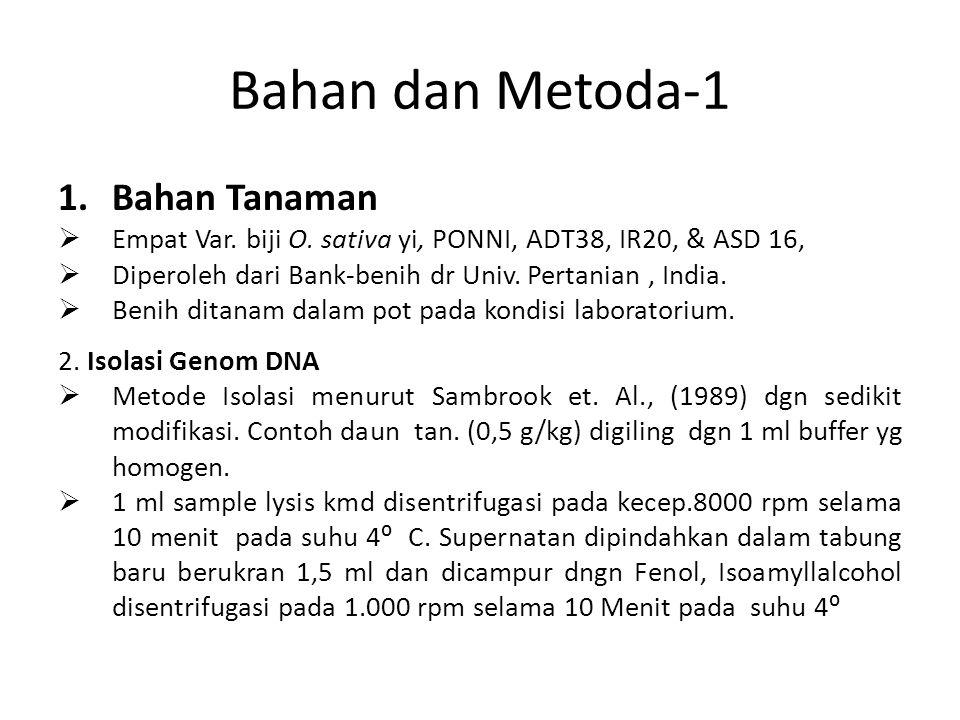 Bahan dan Metoda-1 1.Bahan Tanaman  Empat Var. biji O. sativa yi, PONNI, ADT38, IR20, & ASD 16,  Diperoleh dari Bank-benih dr Univ. Pertanian, India
