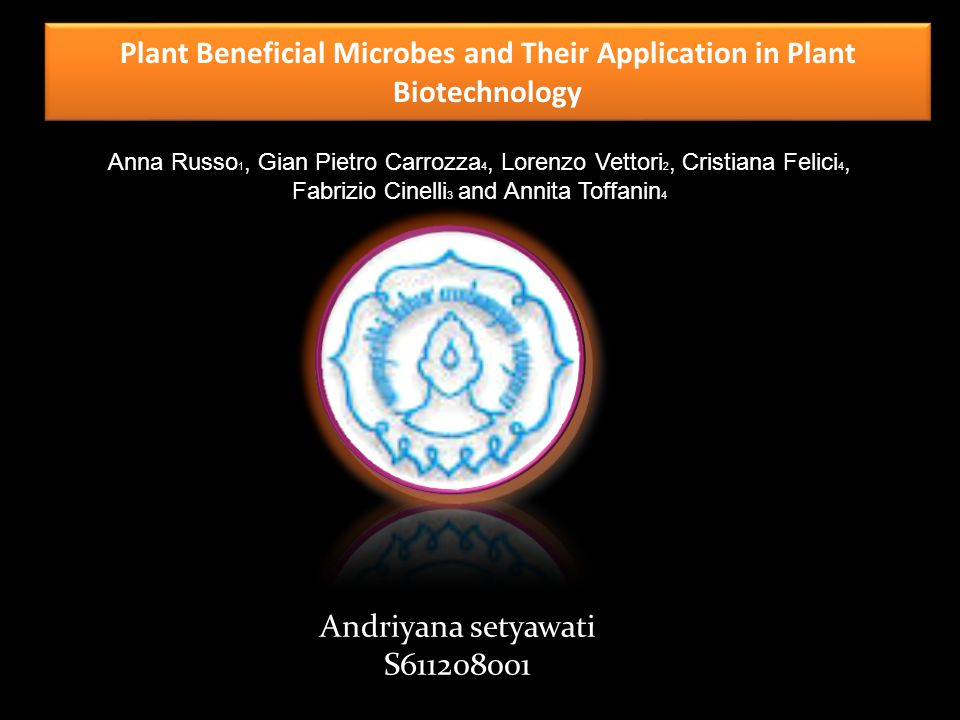 Plant Beneficial Microbes and Their Application in Plant Biotechnology Anna Russo 1, Gian Pietro Carrozza 4, Lorenzo Vettori 2, Cristiana Felici 4, Fabrizio Cinelli 3 and Annita Toffanin 4 Andriyana setyawati S611208001