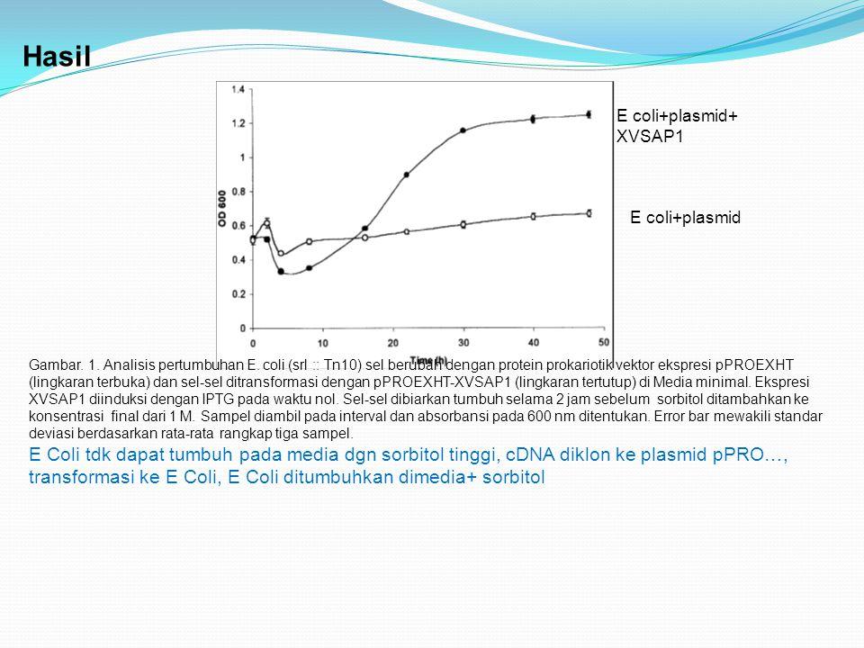Hasil Gambar. 1. Analisis pertumbuhan E. coli (srl :: Tn10) sel berubah dengan protein prokariotik vektor ekspresi pPROEXHT (lingkaran terbuka) dan se