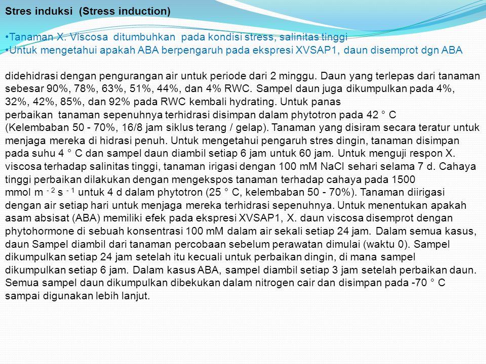 Stres induksi (Stress induction) Tanaman X.