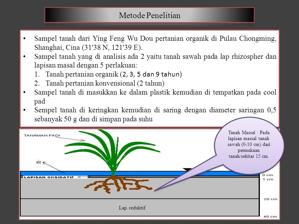 Sempel tanah kering yang sudah di saring Φ 0,5 di analisis : 1.NO3 - dan NH 4 + TDN (Total Dissolved Nitrogen) 2.CaCl 2 SmartChem200 Analyzer (Alliance Corp, France) 3.Jumlah kandungan N dan C CHNS/O Analyzer (Elementar, Jerman) 4.N Organik dihitung sebagai DON (Dissolved Nitrogen Organik) = TDN - (NO 3 + NH 4 ) 5.pH tanah pH meter (perbandingan air : tanah = 50 ml : 10 g) Sempel tanah kering yang sudah di saring Φ 0,5 di analisis : 1.NO3 - dan NH 4 + TDN (Total Dissolved Nitrogen) 2.CaCl 2 SmartChem200 Analyzer (Alliance Corp, France) 3.Jumlah kandungan N dan C CHNS/O Analyzer (Elementar, Jerman) 4.N Organik dihitung sebagai DON (Dissolved Nitrogen Organik) = TDN - (NO 3 + NH 4 ) 5.pH tanah pH meter (perbandingan air : tanah = 50 ml : 10 g)